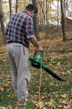 handheld electric leaf blower