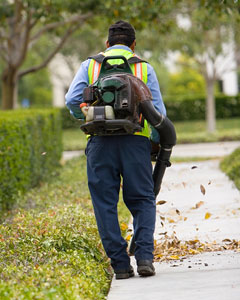 using a backpack leaf blower