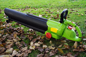 leaf blower and fallen leaves
